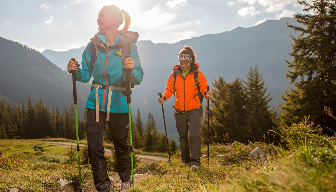 Trekking & walking poles Hiking pole hire